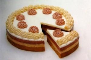 Generalno o tortama